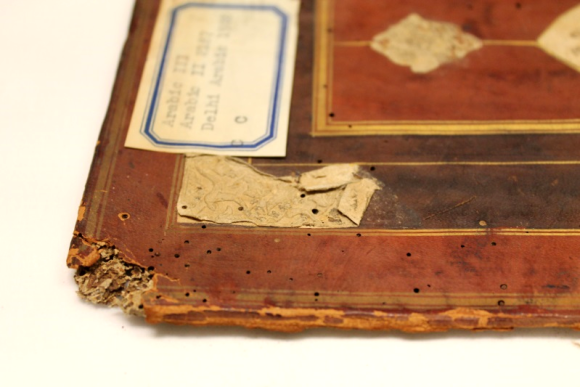 A paper inlay on the inner corner of one of the covers, showing decoration that has been, along with the corner of the cover, attacked by insect pests, in the evidence of round bore holes, while the corner itself is heavily damaged and the iternal structure is exposed.