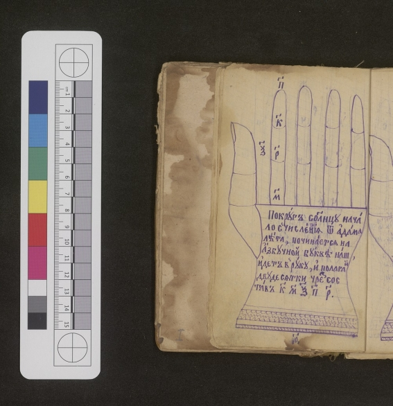 Page of a manuscript showing the left hand with writing in the palm area.