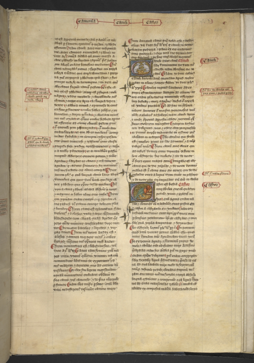 An illustrated page from a manuscript of the Omne Bonum.