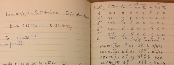 Detail from Mclaren's laboratory notebook dated 1968-1976.