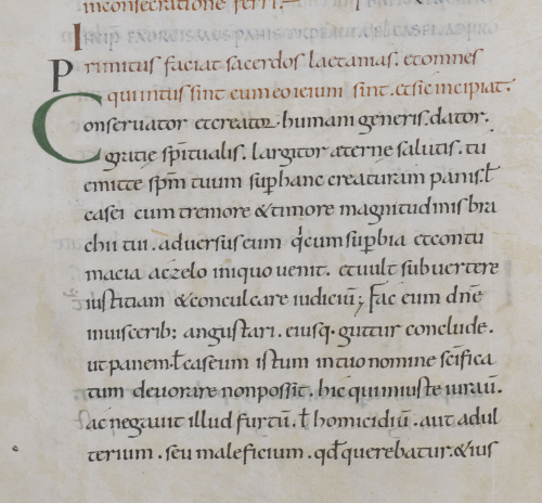 An excellent day for an exorcism - Medieval manuscripts blog