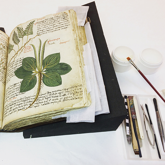 A herbal undergoing repairs to enable safe handling during photography (Add MS 41623)