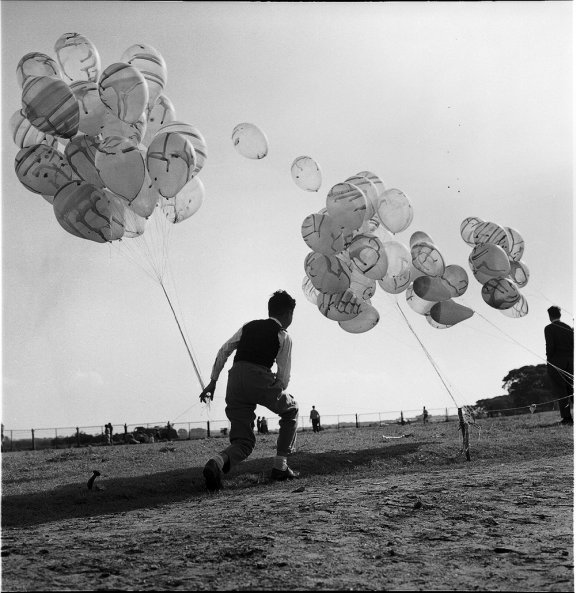 A man stands by bunches of balloons that are secured to poles in the ground.
