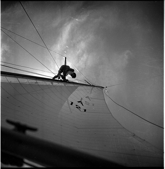 Man at the top of a sailboat mast. The sail covers most of the image.