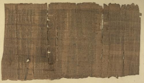 Papyrus 137