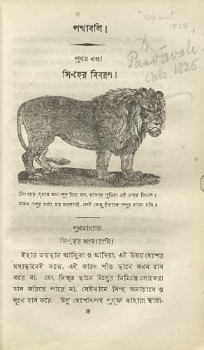 Vt1712_Schoolbook_lion_0007