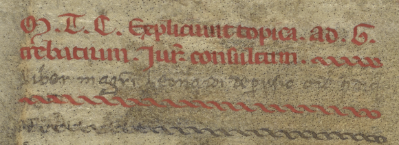 A portion of Parchment showing writing done in two lines in red gothic script. Underneath the red writing is a thinner black handwriting, and underneath that is two separate decorative twined borders, one in red and the other in black. The parchment itself is patchy in color, and the black dots are the hair follicles from the animal skin.