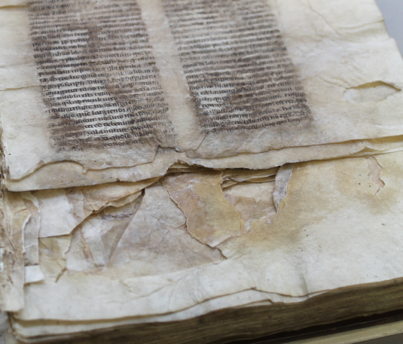 A section of the parchment leaves of the manuscript, showing the two blocks of gothic style text in black ink, running down the page in two neat parallel columns. The damage to the parchment can be seen in the staining of the parchment, including over the text, while there are tears and missing sections around the lower end of the pages.