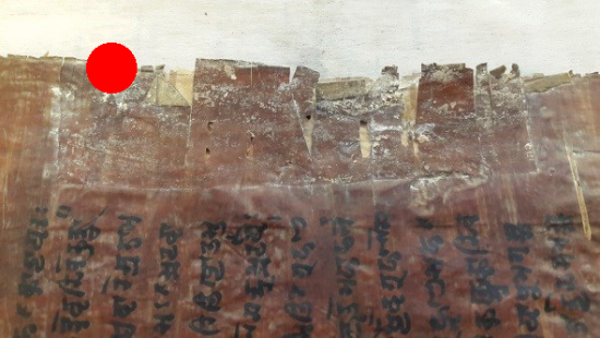 A red dot highlights an area of adhesive residue on the edge of the birch bark page. the original tears of the bark can be seen as they curled inwards from the edge of the page. The adhesive has filled in the gaps and tears to some degree, but stands out as a off-yellow colour against the golden brown of the bark.