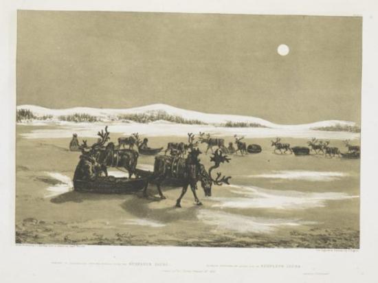Finland100 - Winter sketches Lapland