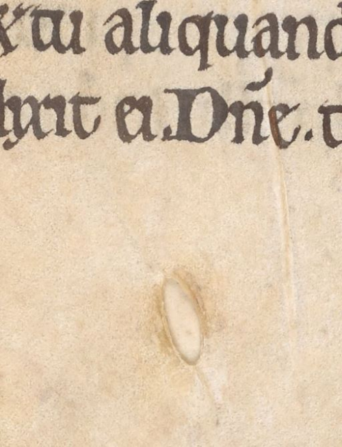 A hole in a manuscript page from the Sherborne Cartulary.