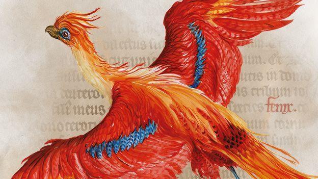 BL Harry Potter 624x351_jpg