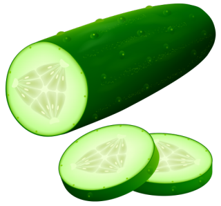Cucumber_PNG_Clipart_Image-467