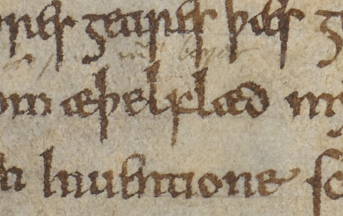 A detail from a manuscript of the Anglo-Saxon Chronicle, showing the name of Æthelflaed, Queen of the Mercians.