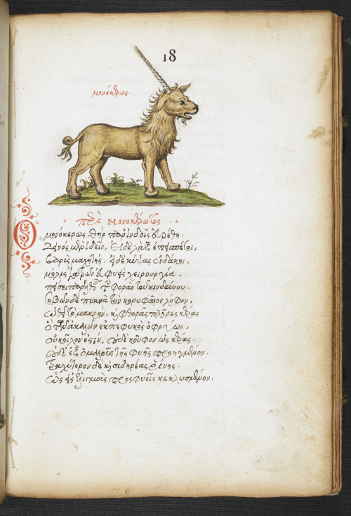 A page from a 16th-century manuscript written in Greek, showing an illustration of a unicorn.