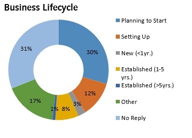 Infographic of Business Lifecycle - Birmingham