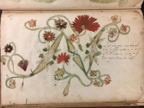 A decorated initial N in a 17th-century manuscript