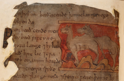 A detail from the Beowulf Manuscript, showing an illustration of elephants accompanying the text of the Marvels of the East.