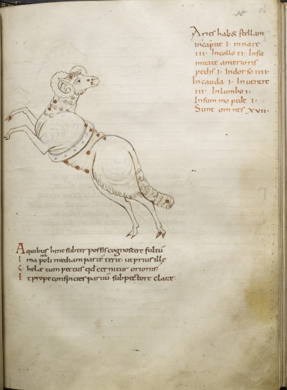 The constellation Aries, from a copy of Cicero's Aratea