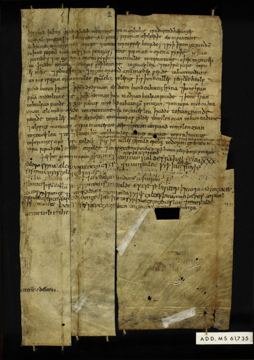 An Anglo-Saxon document, containing records from a farm mentioning female labourers.