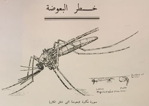 Anti-Marial Measures poster in Arabic and English, with Mosquito illustration