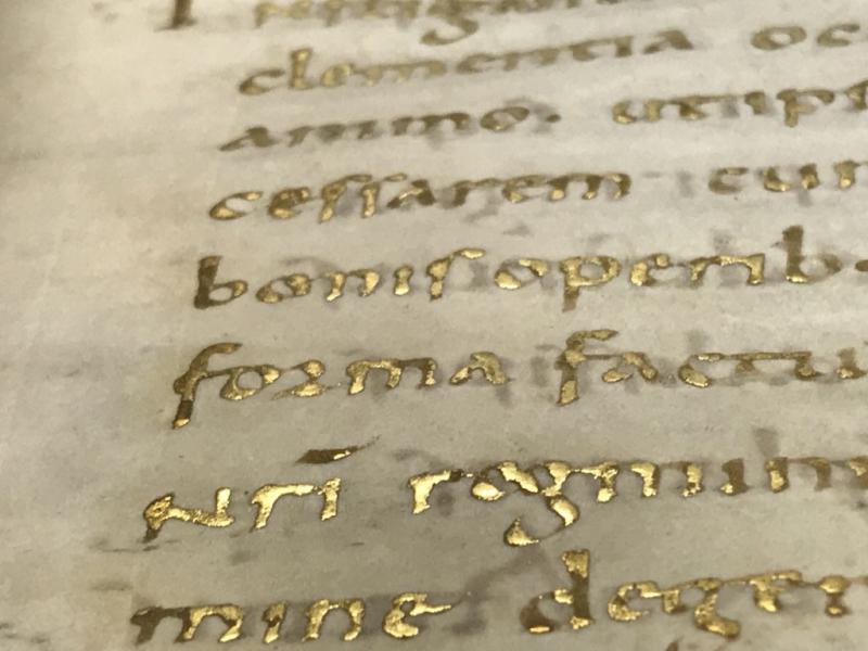 Cotton MS Vespasian A VIII Lea