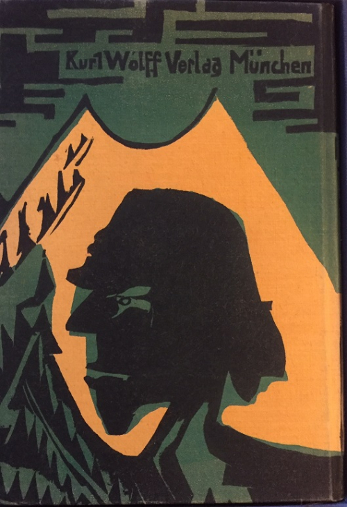 Back cover of 'Umbra Vitae' showing a head in green and black against a yellow background
