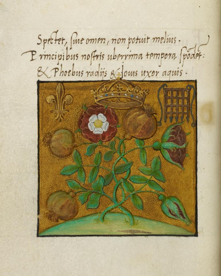 Cotton MS Titus D IV
