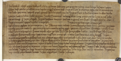 The will of Bishop Ælfric of Elmham.