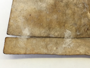 The two pieces of Japanese tissue paper, now attached to the rear of the parchment, where there is a large designed-split to accomodate the seals.