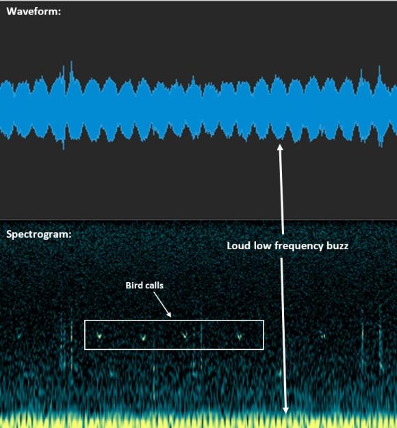 Wave form v spectragram