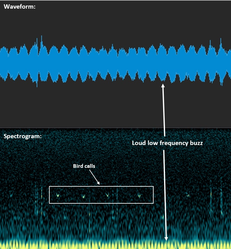 Seeing sound: What is a spectrogram? - Sound and vision blog