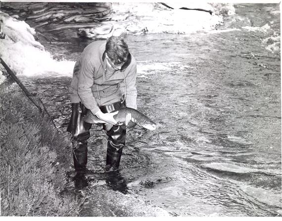 Sir Fred Holliday on the River Dee in Scotland as a young researcher, December 1960