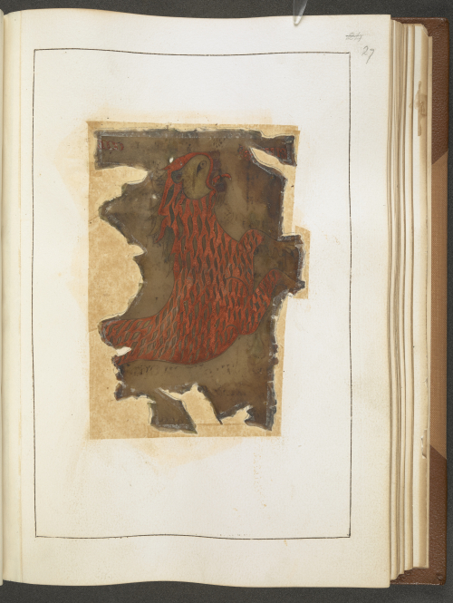 A page from the Otho-Corpus Gospels, showing an illustration of a lion, the symbol of the Evangelist St Mark, damaged by the Ashburnham House fire.