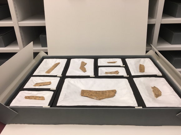 Some of the Chinese Oracle bones in their storage box