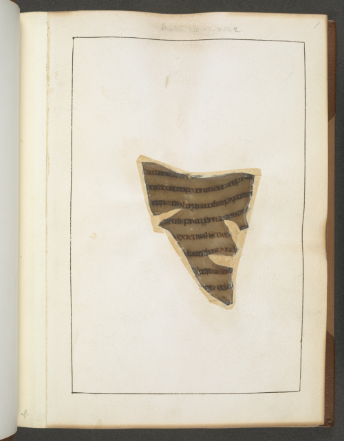 A burned page of manuscript