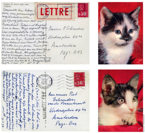 Two picture postcards with images of kittens and writing in Dutch on the reverse