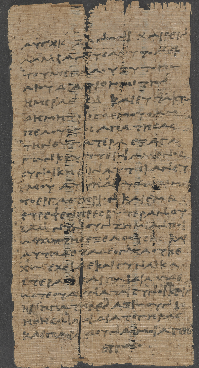 Papyrus_2660_cropped