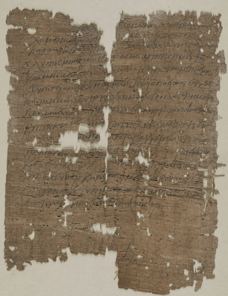 Papyrus_2217_cropped