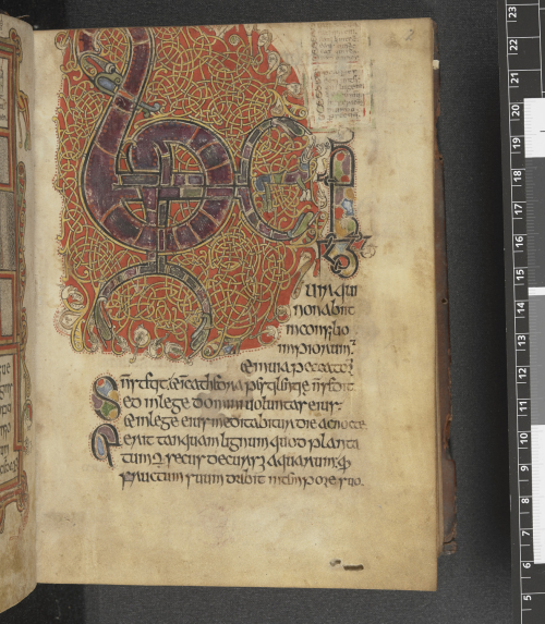 The Beatus page from the Psalter of Cormac, opening with a large decorated initial.