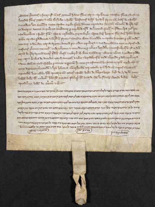 A medieval charter, written in Latin and Hebrew, recording the rent for a Jewish cementary