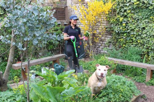 Me garden 3