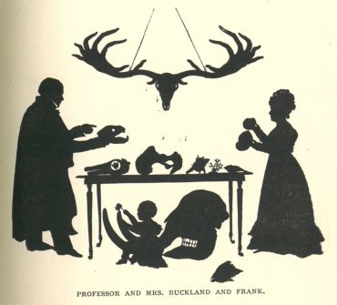 Drawing of Professor and Mrs Buckland and thier young son Frank with fossils