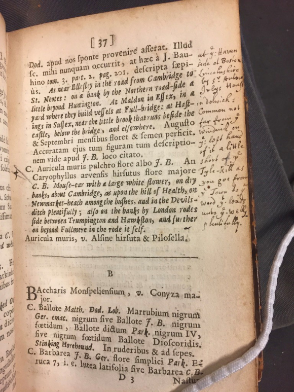 Manuscript note in John Ray's Catalogus plantarum