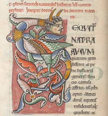 Image 1 - Pliny  Naturalis Historia