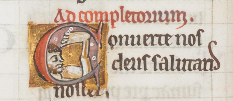 Image 6 - Sciapod in Arundel MS 157