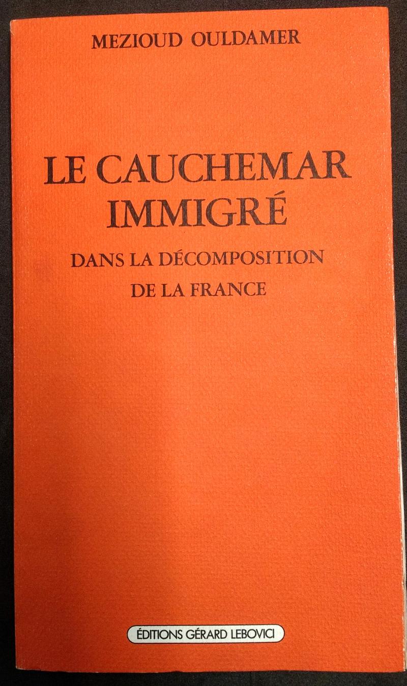 Le Cauchemar immigré dans la décomposition de la France