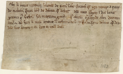 The reverse of a medieval charter, showing a Latin text acknowledging a payment