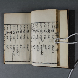 The book opened to a page displaying Chinese characters in columns.