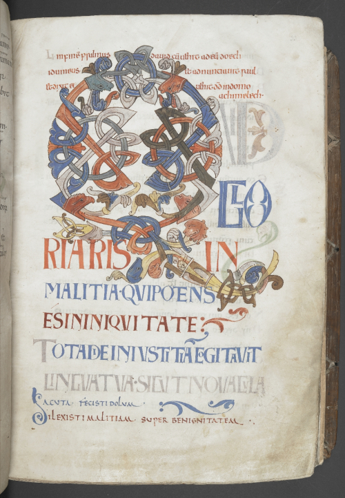 A page from a medieval manuscript with a large letter Q formed from interlace animals and plants